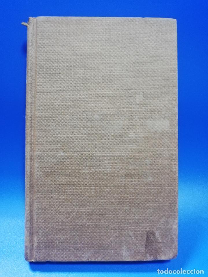 EL OJO AVIZOR. MARY HIGGINS CLARK. 1986. PAGS. 268. (Libros de Segunda Mano (posteriores a 1936) - Literatura - Narrativa - Otros)