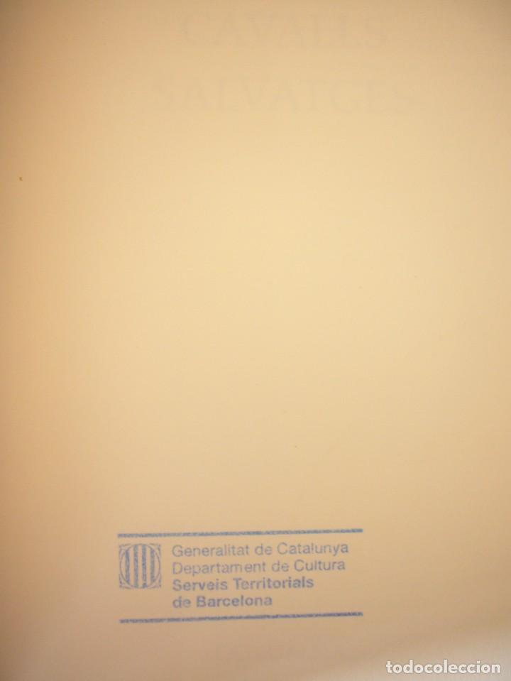 Libros de segunda mano: JORDI CUSSÀ: CAVALLS SALVATGES (COLUMNA, 2000) PERFECTE ESTAT. MOLT RARA PRIMERA EDICIÓ. - Foto 4 - 288350778