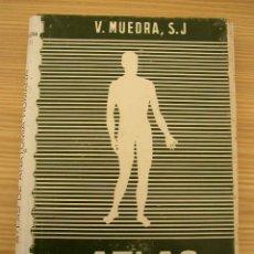 Libros de segunda mano: ATLAS DE ANATOMIA HUMANA-V. MUEDRA- 1965- EDC. JOVER.- VER FOTOS.. Lote 16040970