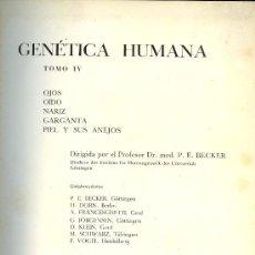 Libros de segunda mano: MEDICINA. GENETICA HUMANA TOMO IV POR P.E.BECKER. ED. TORAY BARCELONA 1968. 1ª EDICION. Lote 12539195