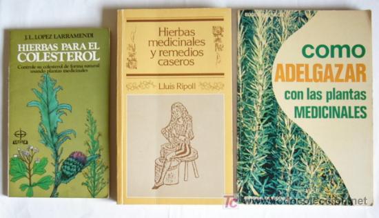 plantas medicinales caseras para adelgazar