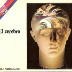 Libros de segunda mano: EL CEREBRO. COLECCIÓN SALVAT. TEMAS CLAVE. Nº 31.. Lote 27277422