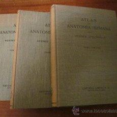 Libros de segunda mano: ATLAS DE ANATOMIA HUMANA - WERNER SPALTEHOLZ - 3 TOMOS - EDITORIAL LABOR - 1967 -. Lote 29272224