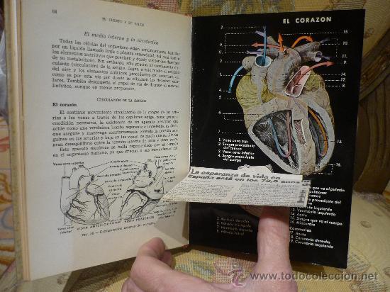 Libros de segunda mano: TU CUERPO Y TU SALUD DEL DOCTOR F. GOUST. 1ª EDICION 1.964. - Foto 2 - 29772673