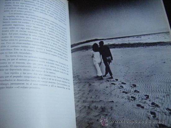 Libros de segunda mano: UN NIÑO VA A NACER, ORGANÓN, LENNART NILSSON, 1967. 160 PÁGINAS. FOTOGRAFIAS. 18 X 26 CM. TAPA DURA. - Foto 14 - 213456668