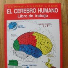 Libros de segunda mano: EL CEREBRO HUMANO, LIBRO DE TRABAJO, VARIOS AUTORES. Lote 42415619