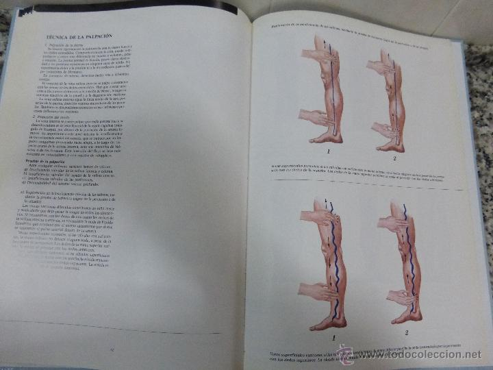 sistema venoso.anatomia, fisiología y examen cl - Comprar Libros de ...