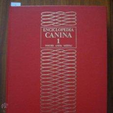 Libros de segunda mano: ENCICLOPEDIA CANINA. TOMO 1 - NOGUER, ANESA, RIZZOLI - LAS RAZAS CANINAS DE FIORENZO FIORONE. Lote 42664551