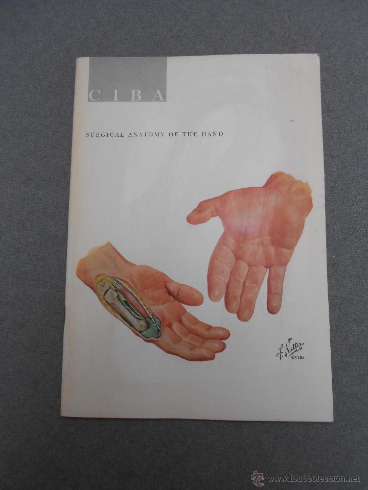 revista ciba. anatomia quirurgica de la mano - Comprar Libros de ...