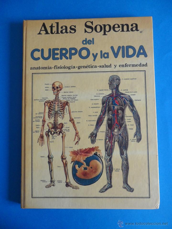 atlas sopena del cuerpo y la vida + fasciculo d - Comprar Libros de ...
