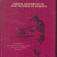 Libros de segunda mano: HISTORIA DE LA COMPOSICION DEL CUERPO HUMANO-LAMINAS ANATOMICAS-169 PAGINAS-GRANADA-AÑO 2000-LM1. Lote 48750018
