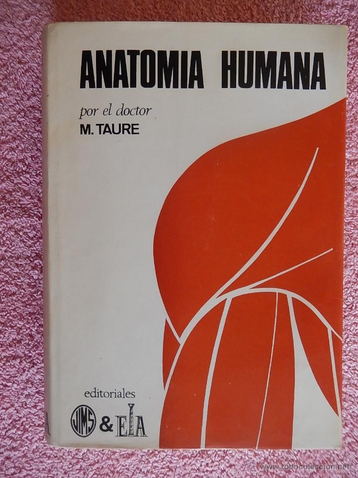 anatomía humana 2 1966 augusta taure edición 5ª - Comprar Libros de ...