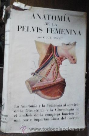 anatomía de la pelvis femenina, c.f.v. scout - Comprar Libros de ...