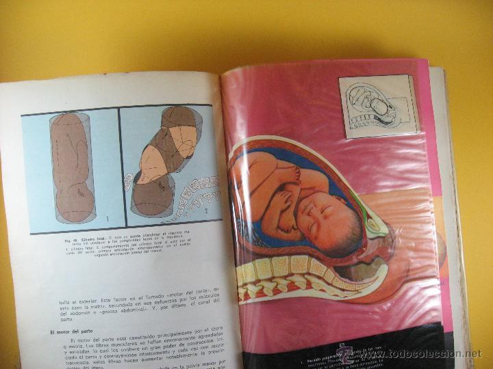 libro la madre y el niño tomo 1, parto, embaraz - Comprar Libros de ...