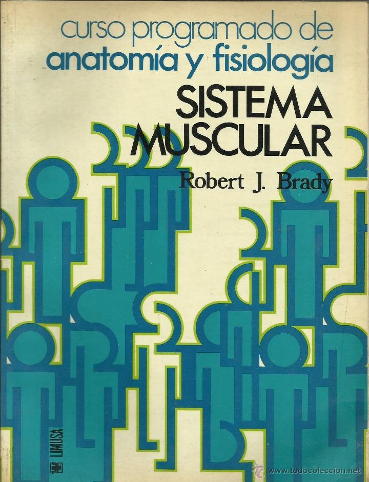 sistema muscular -del curso programado de anato - Comprar Libros de ...