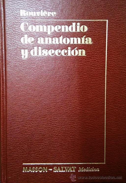 compendio de anatomia y diseccion rouviere pdf gratis