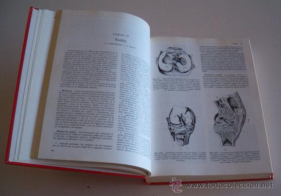 Libros de segunda mano: LUIS A. HERNÁNDEZ, Texto básico de reumatología clínica. RM73488. - Foto 2 - 54800202