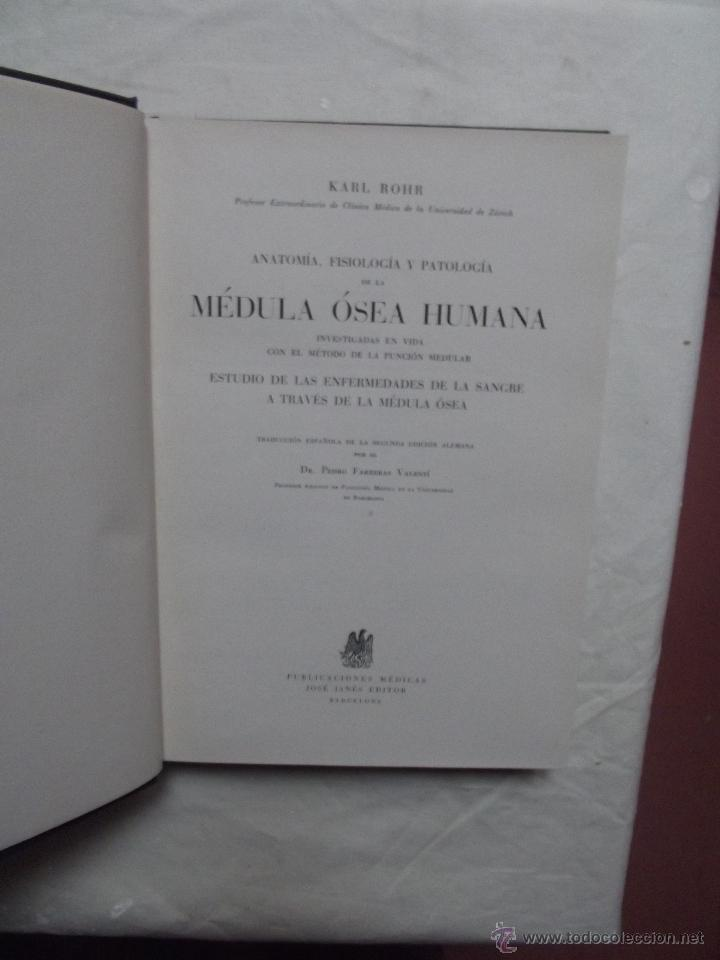 anatomia,fisiologia y patologia de la medula os - Comprar Libros de ...
