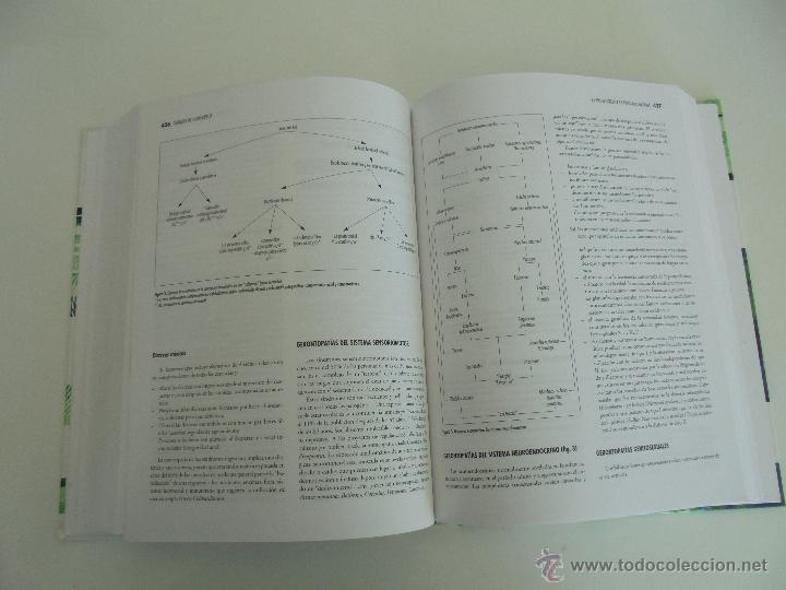 Libros de segunda mano: TRATADO DE HOMEOPATIA. COLECCION HOMEOPATIA. EDITORIAL PAIDOTRIBO 2000. VER FOTOGRAFIAS ADJUNTAS. - Foto 21 - 217854118