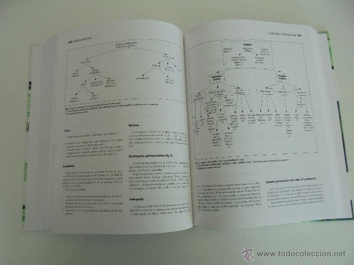 Libros de segunda mano: TRATADO DE HOMEOPATIA. COLECCION HOMEOPATIA. EDITORIAL PAIDOTRIBO 2000. VER FOTOGRAFIAS ADJUNTAS. - Foto 22 - 217854118