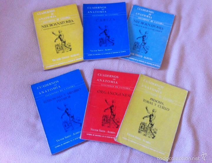 Cuadernos de anatomia facultad medicina de vale comprar - Libreria segunda mano valencia ...