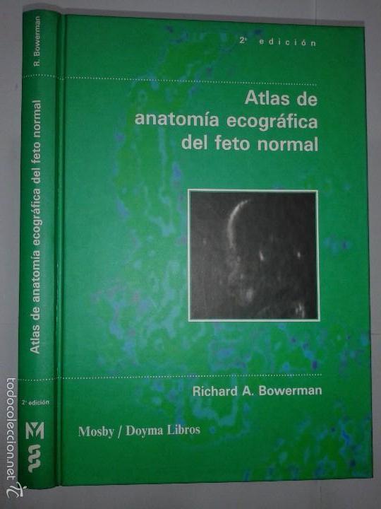 atlas de anatomía ecográfica del feto normal 19 - Comprar Libros de ...