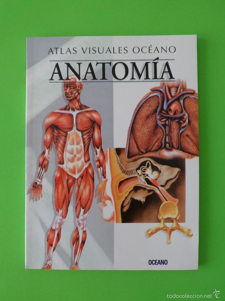 atlas visuales océano anatomía. - Comprar Libros de medicina ...