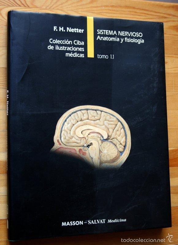 netter - sistema nervioso - anatomia y fisiolog - Comprar Libros de ...