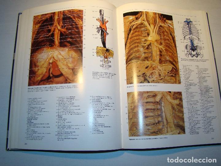 atlas fotográfico de anatomía humana - rohen -- - Comprar Libros de ...