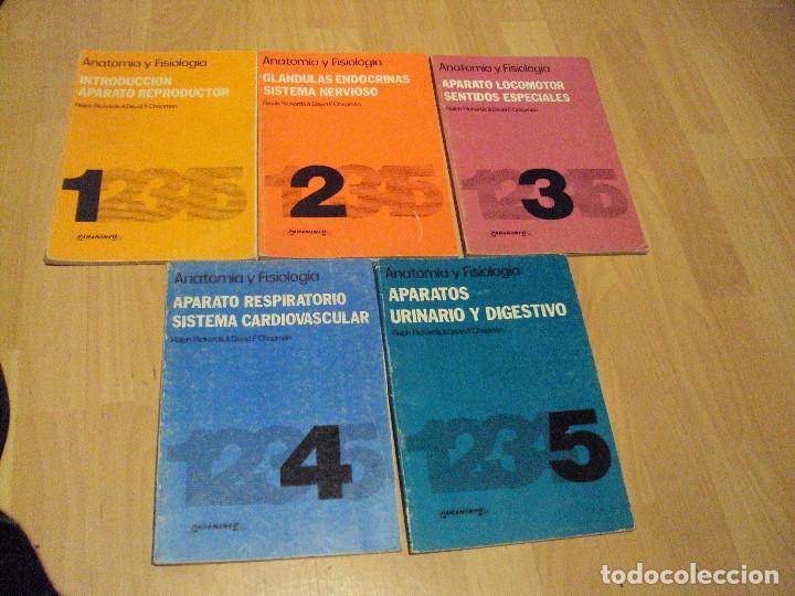 lote de 5 libros de la editorial paraninfo de 1 - Comprar Libros de ...