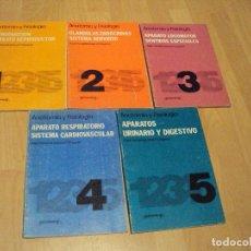 Libros de segunda mano: LOTE DE 5 LIBROS DE LA EDITORIAL PARANINFO DE 1982 SOBRE ANATOMIA Y FISIOLOGIA. Lote 76620851