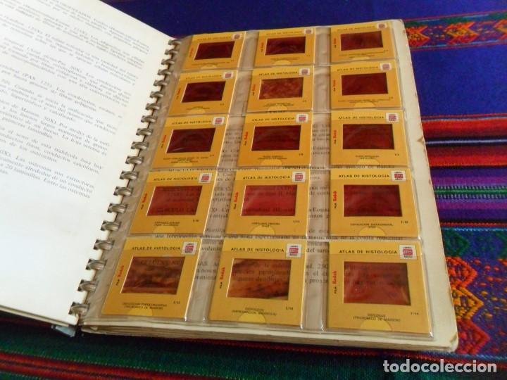 Libros de segunda mano: ATLAS DE HISTOLOGÍA HUMANA FASCÍCULO 9 CON 120 DIAPOSITIVAS. MARBAN 1ª ED. 1974. RARO. - Foto 4 - 77413913