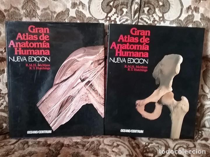 gran atlas de anatomía humana, de mcminn y hutc - Comprar Libros de ...