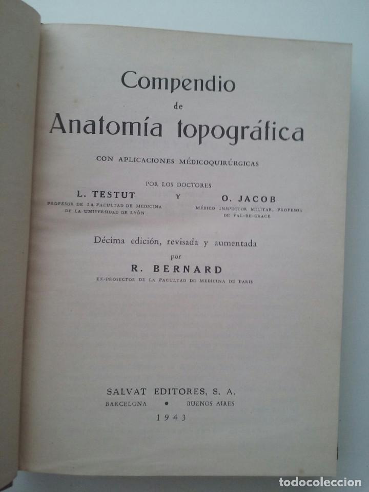 Anatomia Topografica Testut Download