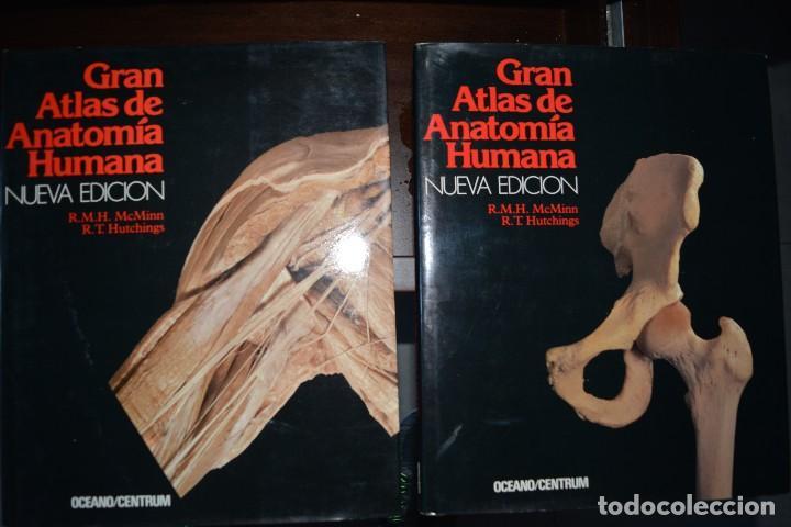 gran atlas de anatomia humana. nueva edicion. o - Comprar Libros de ...