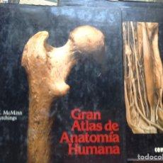 Libros de segunda mano: GRAN ATLAS DE ANATOMÍA HUMANA. R. M. H. MC MINN. DOS TOMOS. Lote 90236230