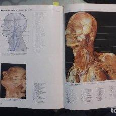 Libros de segunda mano: ATLAS FOTOGRAFICO DE ANATOMIA HUMANA ((1994) - YOKOCHI & ROHEN - ISBN: 9788481740004. Lote 94176885