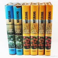 Libros de segunda mano: LA SALUD POR LA NATURALEZA (2 TOMOS) + POR LA NUTRUCION (4 TOMOS) E.SCHNEIDER EDITORIAL SAFELIZ, 8KG. Lote 94665823