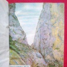 Libros de segunda mano: NATURISMO EDICIONES PASTOR VALENCIA ENCICLOPEDIA DE LA SALUD 21-30 FASCICULOS 600 GRS 21 CMS AÑOS 50. Lote 94727231