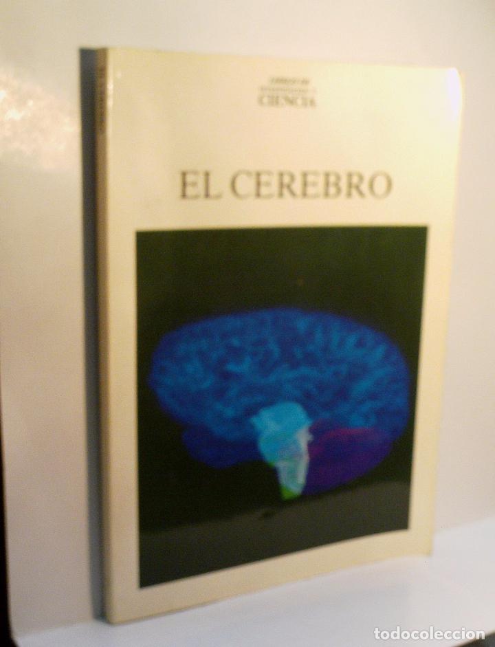 EL CEREBRO. 1987 (Libros de Segunda Mano - Ciencias, Manuales y Oficios - Medicina, Farmacia y Salud)