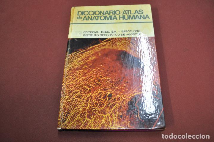 diccionario atlas de anatomia humana , editori - Comprar Libros de ...