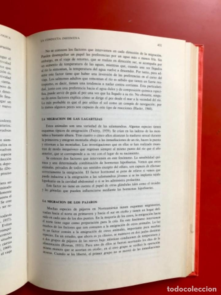 Libros de segunda mano: Psicología fisiológica clifford morgan 1973 psicología de la adolescencia jersild 1972 1 edición - Foto 31 - 100718819