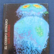 Libros de segunda mano: LIBRO TOMO EL CUERPO HUMANO: LOS RIÑONES - CLUB INTERNACIONAL DEL LIBRO - VEASE CONTENIDO INDICE. Lote 101093663