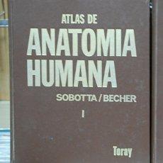 Libros de segunda mano: ATLAS DE ANATOMÍA HUMANA, I HUESOS, LIGAMENTOS, ARTICULACIONES Y MUSCULOS. SOBOTTA / BECHER.. Lote 144532582