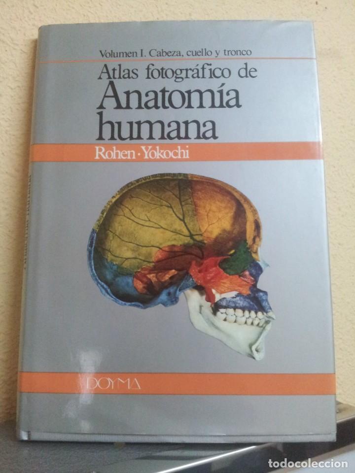 atlas fotografico de anatomia humana rohen-yoko - Comprar Libros de ...