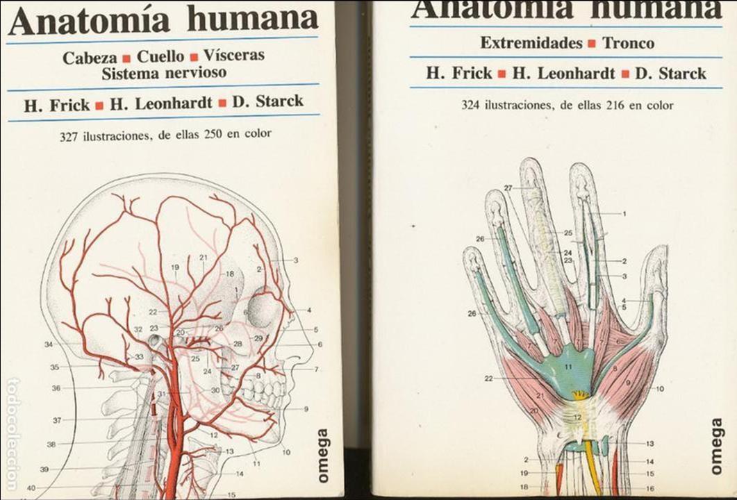 h. frick, h. leonhardt y d. starck, manual de a - Comprar Libros de ...
