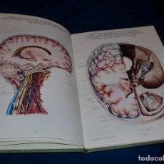 Libros de segunda mano: LÁMINAS DE ANATOMÍA - LABORATORIOS ALMIRALL. Lote 109314471