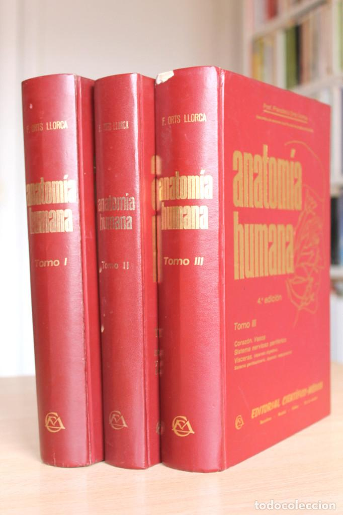 francisco orts llorca - anatomía humana 3 tomos - Comprar Libros de ...