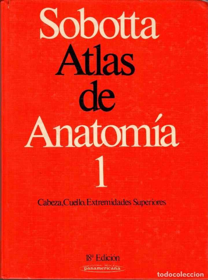 sobotta. atlas de anatomía. 2 vol. 18ª ed. - Comprar Libros de ...