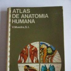 Libros de segunda mano: ATLAS DE ANATOMIA HUMANA - V. MUEDRA - EDICIONES JOVER - 1978 - . Lote 143123573